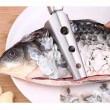 balık pulu temizleme aparatı